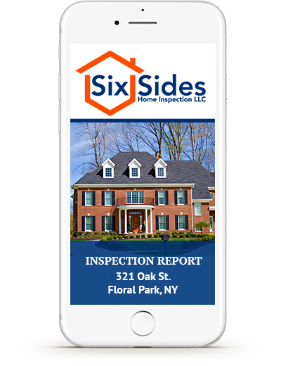Phone with Example Inspection Report